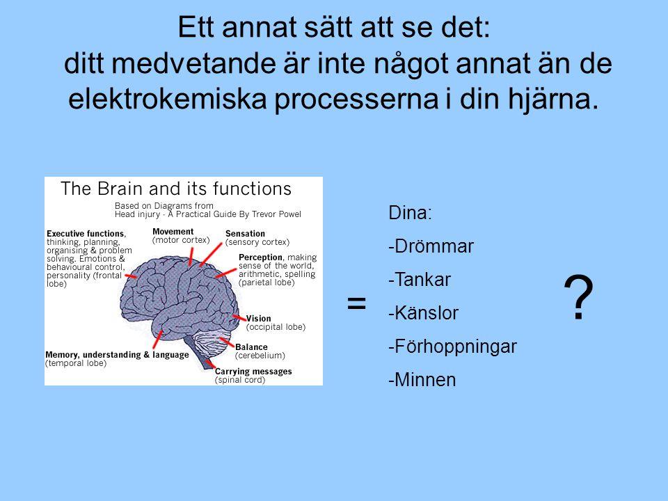 Ett annat sätt att se det: ditt medvetande är inte något annat än de elektrokemiska processerna i din hjärna.