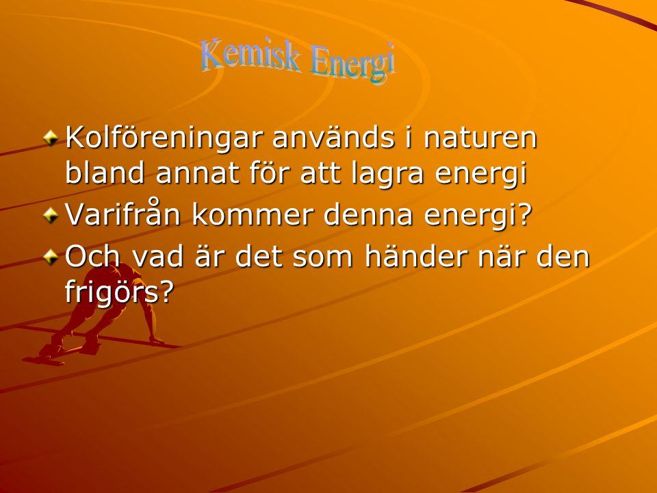 Kolföreningar används i naturen bland annat för att lagra energi Varifrån kommer denna energi? Och vad är det som händer när den frigörs?