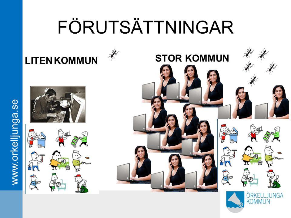 FÖRUTSÄTTNINGAR LITENKOMMUN STOR KOMMUN