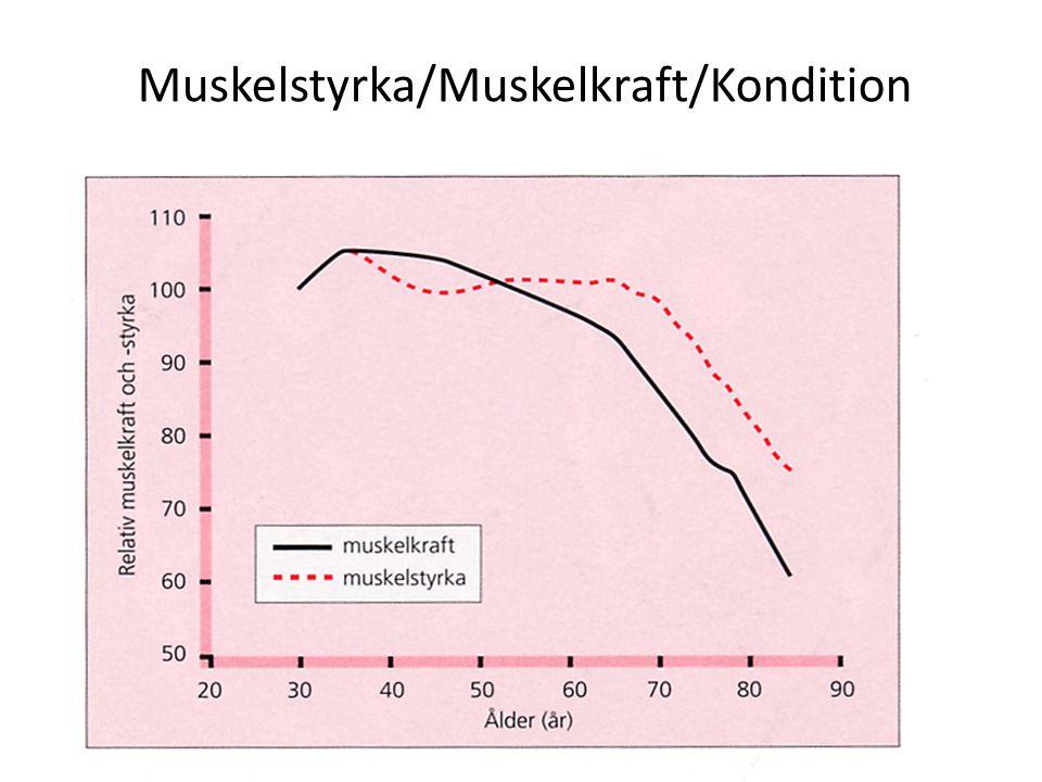 Muskelstyrka/Muskelkraft/Kondition