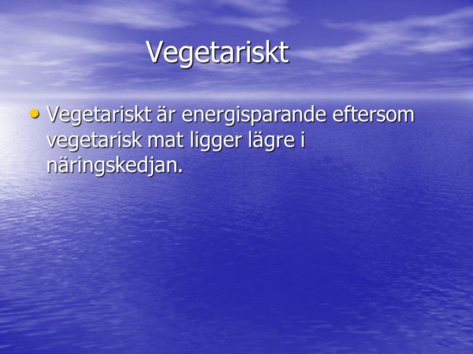 Vegetariskt Vegetariskt Vegetariskt är energisparande eftersom vegetarisk mat ligger lägre i näringskedjan.