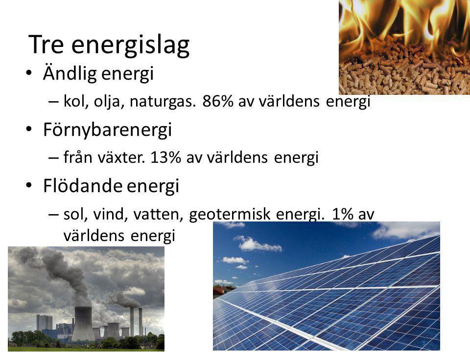 Tre energislag Ändlig energi – kol, olja, naturgas. 86% av världens energi Förnybarenergi – från växter. 13% av världens energi Flödande energi – sol,