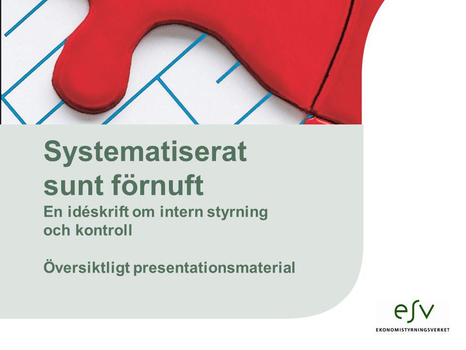 Systematiserat sunt förnuft En idéskrift om intern styrning och kontroll Översiktligt presentationsmaterial