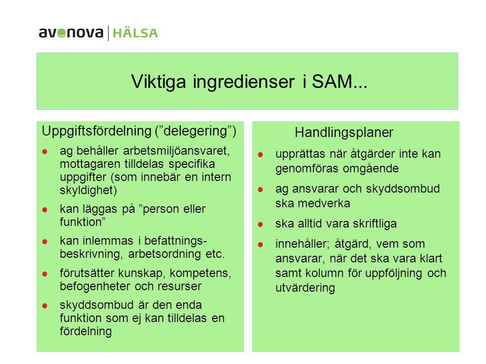 """Viktiga ingredienser i SAM... Uppgiftsfördelning (""""delegering"""") ag behåller arbetsmiljöansvaret, mottagaren tilldelas specifika uppgifter (som innebär"""