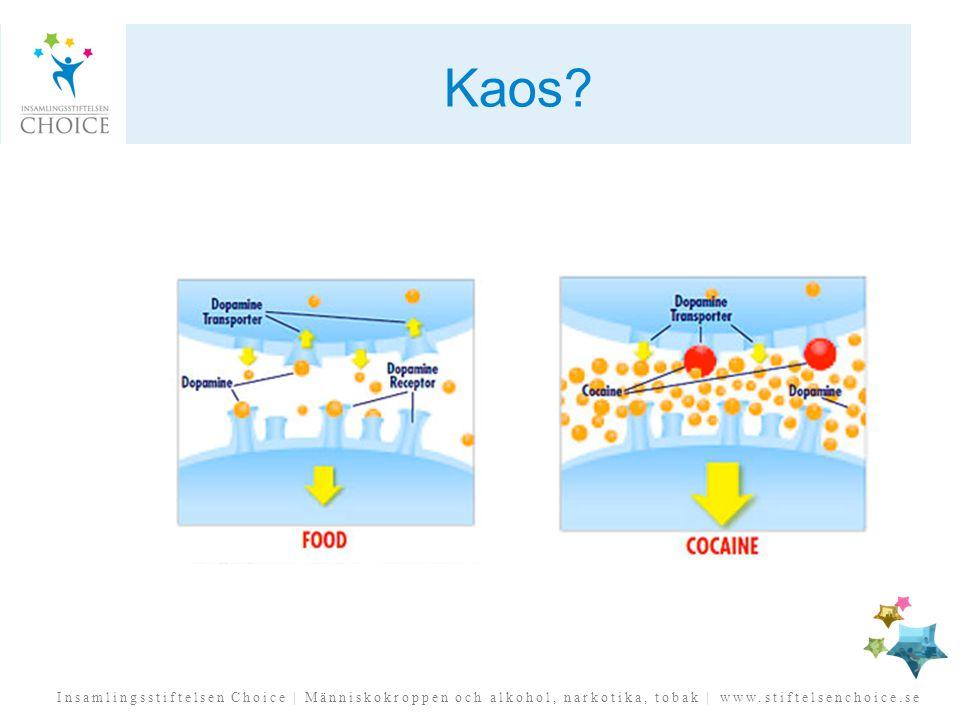 Insamlingsstiftelsen Choice | Människokroppen och alkohol, narkotika, tobak | www.stiftelsenchoice.se Kaos?