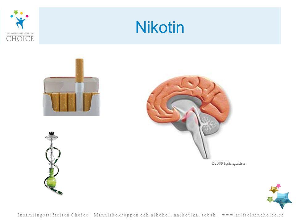 Insamlingsstiftelsen Choice | Människokroppen och alkohol, narkotika, tobak | www.stiftelsenchoice.se Nikotin ©2009 Hjärnguiden
