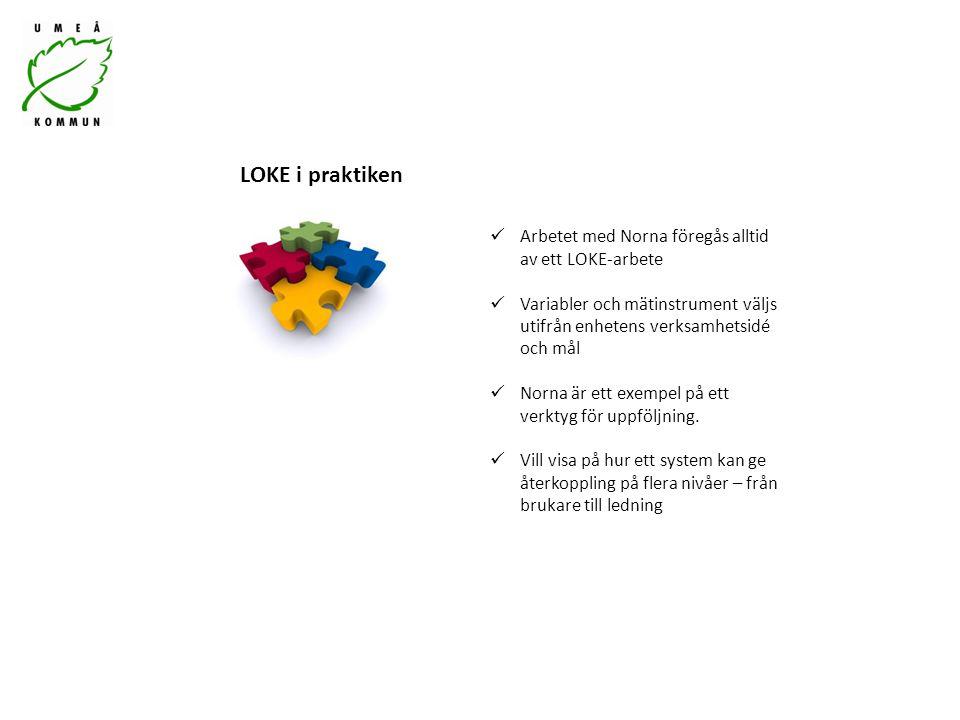 Arbetet med Norna föregås alltid av ett LOKE-arbete Variabler och mätinstrument väljs utifrån enhetens verksamhetsidé och mål Norna är ett exempel på ett verktyg för uppföljning.