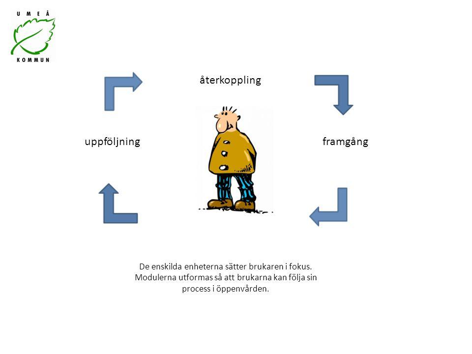 De enskilda enheterna sätter brukaren i fokus. Modulerna utformas så att brukarna kan följa sin process i öppenvården. uppföljning återkoppling framgå