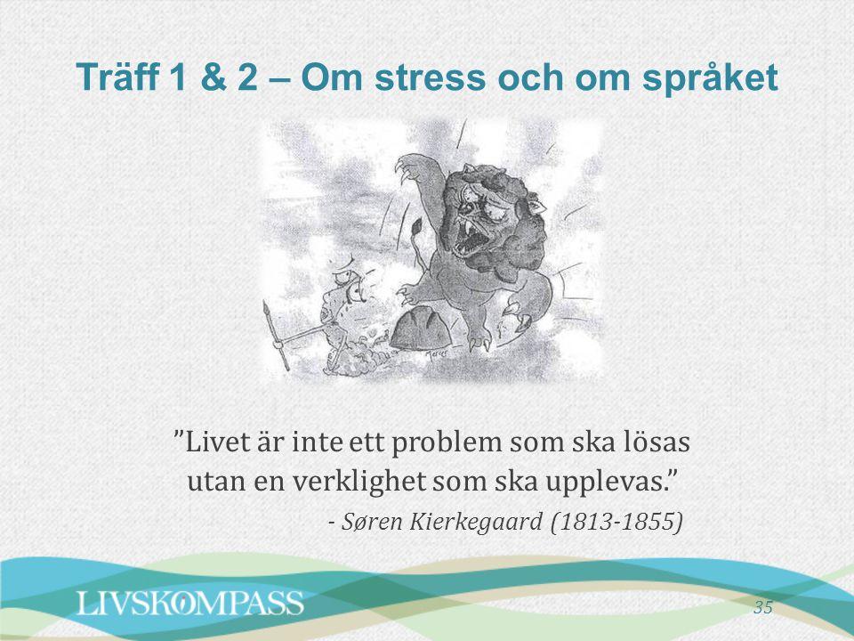 """Träff 1 & 2 – Om stress och om språket """"Livet är inte ett problem som ska lösas utan en verklighet som ska upplevas."""" - Søren Kierkegaard (1813-1855)"""