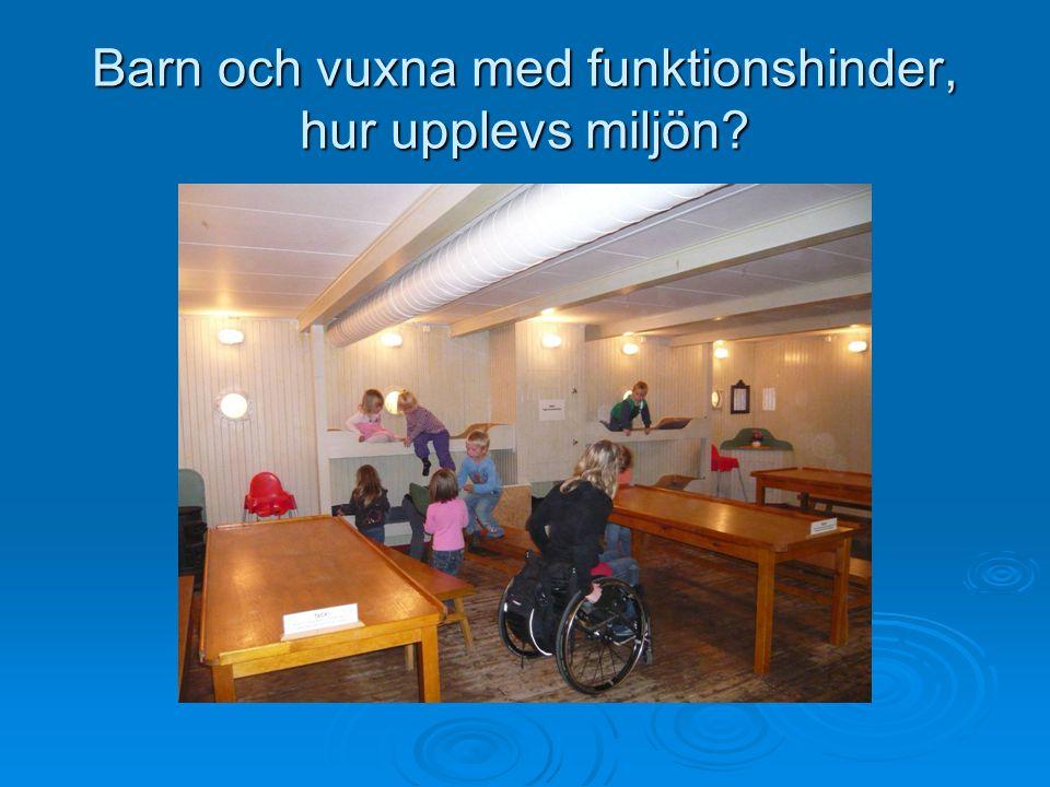 Barn och vuxna med funktionshinder, hur upplevs miljön?