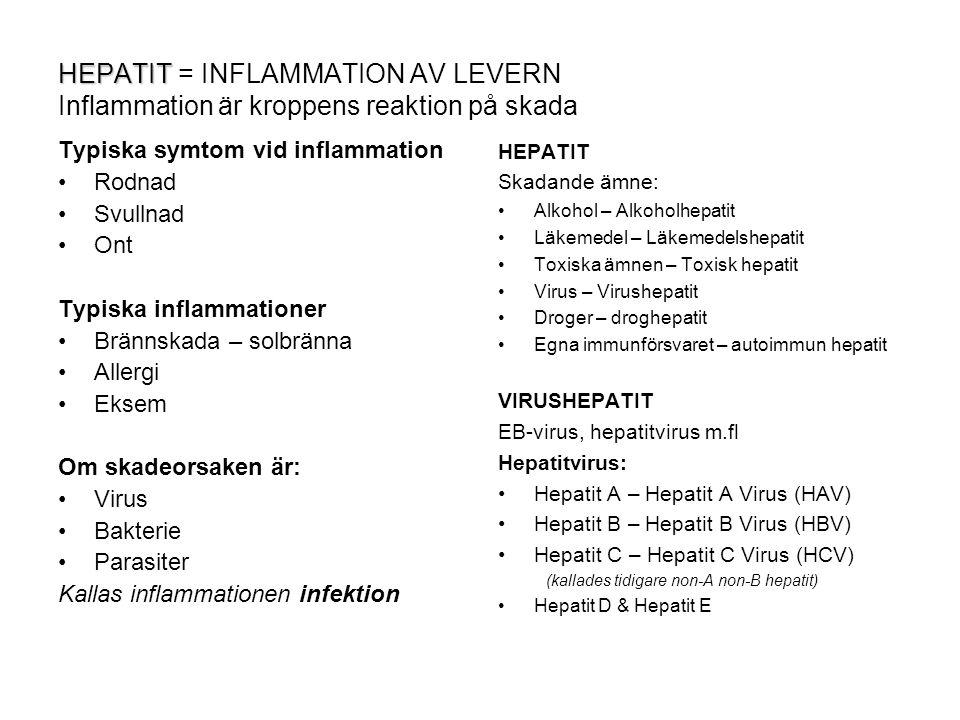 HEPATIT HEPATIT = INFLAMMATION AV LEVERN Inflammation är kroppens reaktion på skada Typiska symtom vid inflammation Rodnad Svullnad Ont Typiska inflam