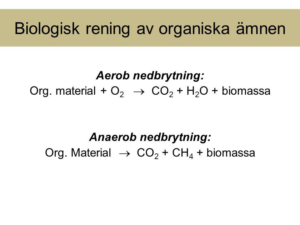 Biologisk rening av organiska ämnen Aerob nedbrytning: Org. material + O 2  CO 2 + H 2 O + biomassa Anaerob nedbrytning: Org. Material  CO 2 + CH 4