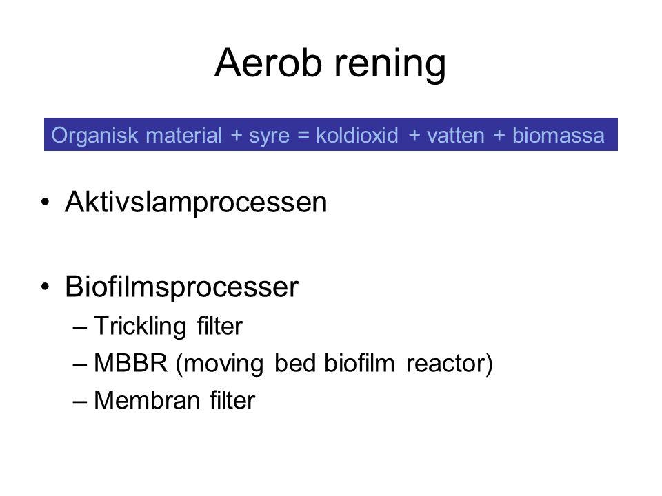 Aerob rening Aktivslamprocessen Biofilmsprocesser –Trickling filter –MBBR (moving bed biofilm reactor) –Membran filter Organisk material + syre = kold