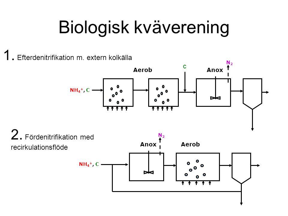 Biologisk kväverening AerobAnox NH 4 +, C N2N2 C 1. Efterdenitrifikation m. extern kolkälla N2N2 AnoxAerob NH 4 +, C 2. Fördenitrifikation med recirku