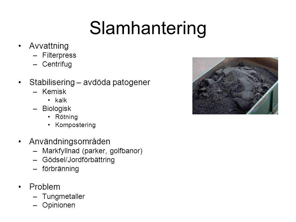 Slamhantering Avvattning –Filterpress –Centrifug Stabilisering – avdöda patogener –Kemisk kalk –Biologisk Rötning Kompostering Användningsområden –Mar