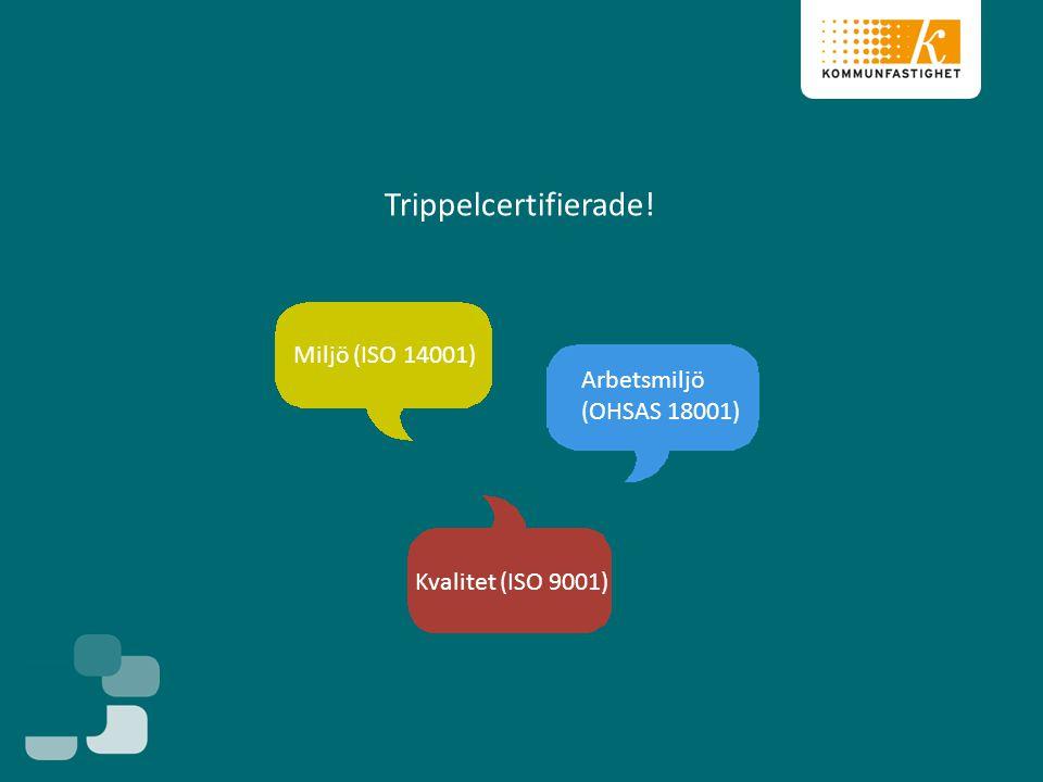 Trippelcertifierade! Miljö (ISO 14001) Kvalitet (ISO 9001) Arbetsmiljö (OHSAS 18001)