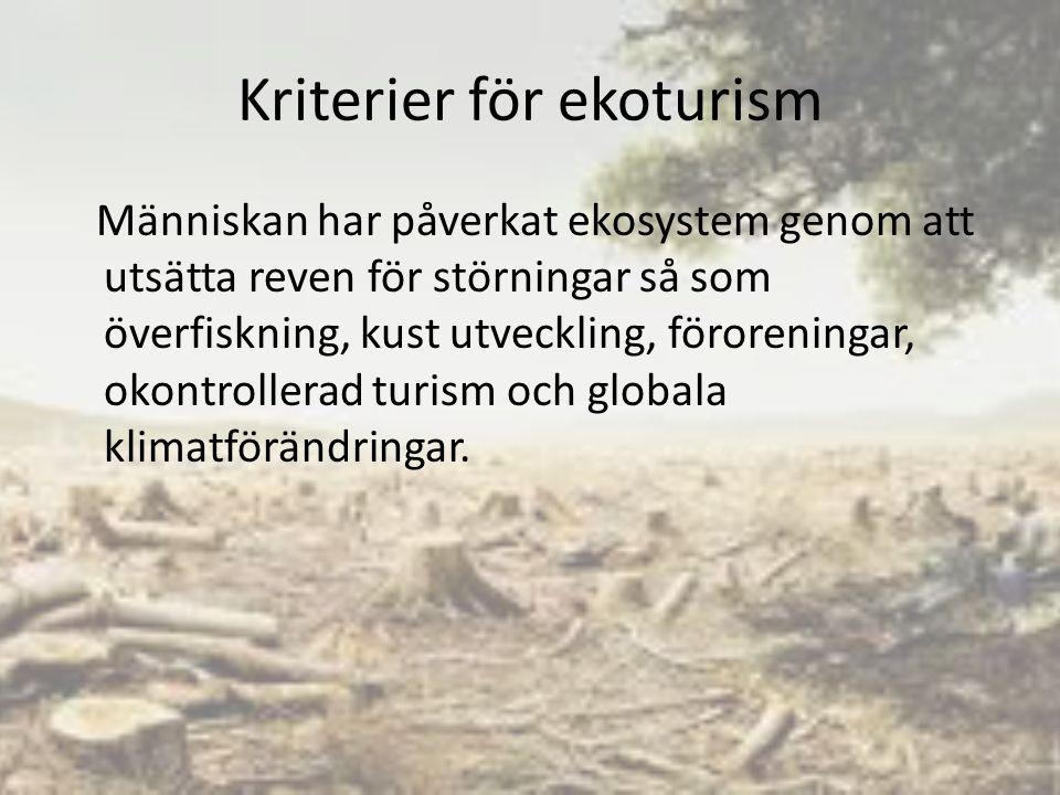 Kriterier för ekoturism Människan har påverkat ekosystem genom att utsätta reven för störningar så som överfiskning, kust utveckling, föroreningar, okontrollerad turism och globala klimatförändringar.
