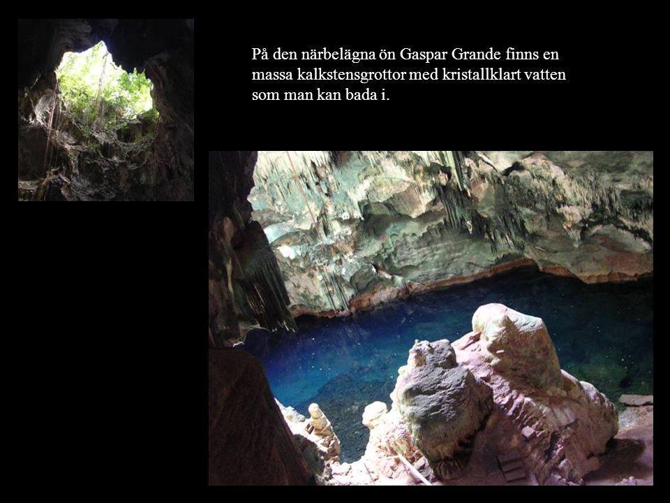 På den närbelägna ön Gaspar Grande finns en massa kalkstensgrottor med kristallklart vatten som man kan bada i.