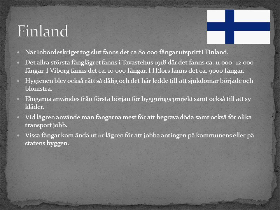 När inbördeskriget tog slut fanns det ca 80 000 fångar utspritt i Finland.