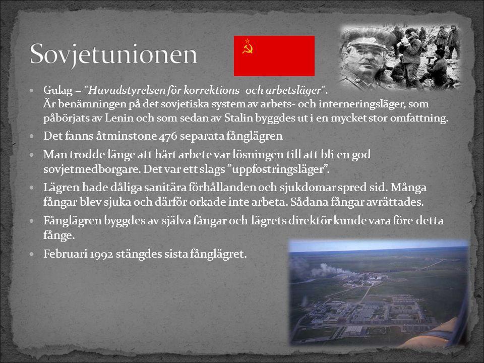 Gulag = Huvudstyrelsen för korrektions- och arbetsläger .