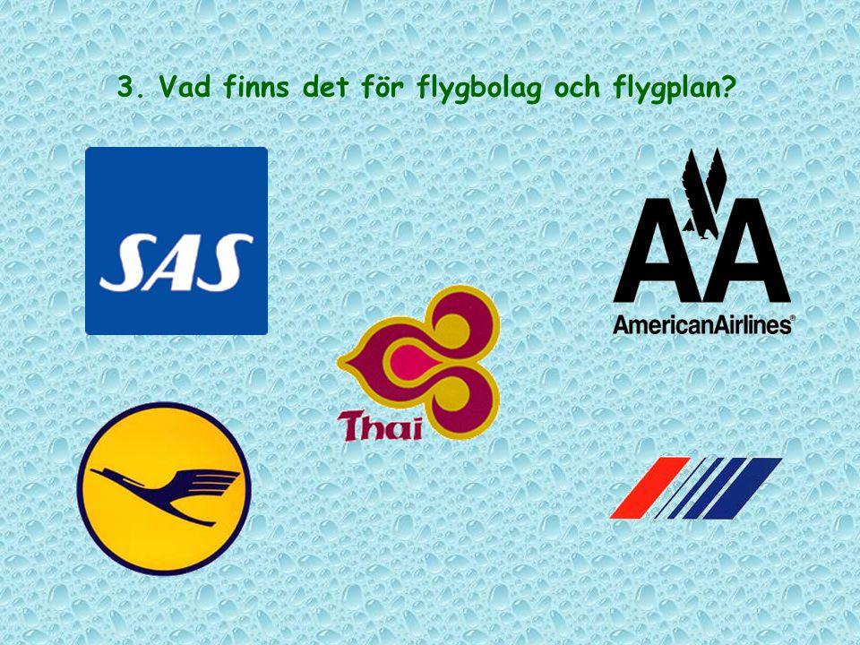 3. Vad finns det för flygbolag och flygplan?