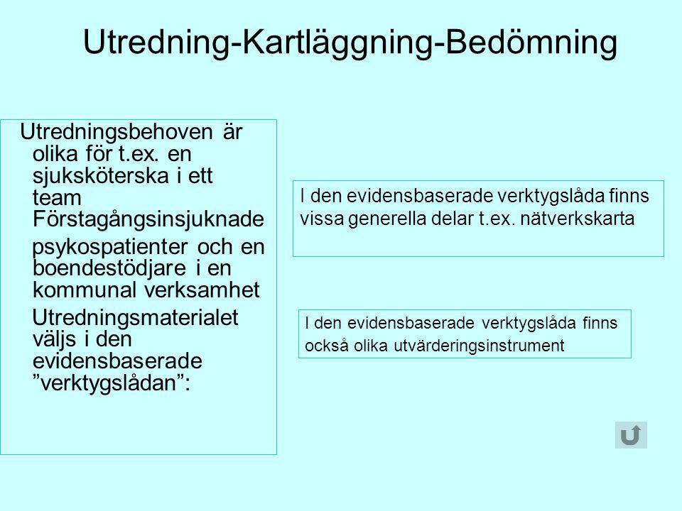 Utredning-Kartläggning-Bedömning Utredningsbehoven är olika för t.ex. en sjuksköterska i ett team Förstagångsinsjuknade psykospatienter och en boendes