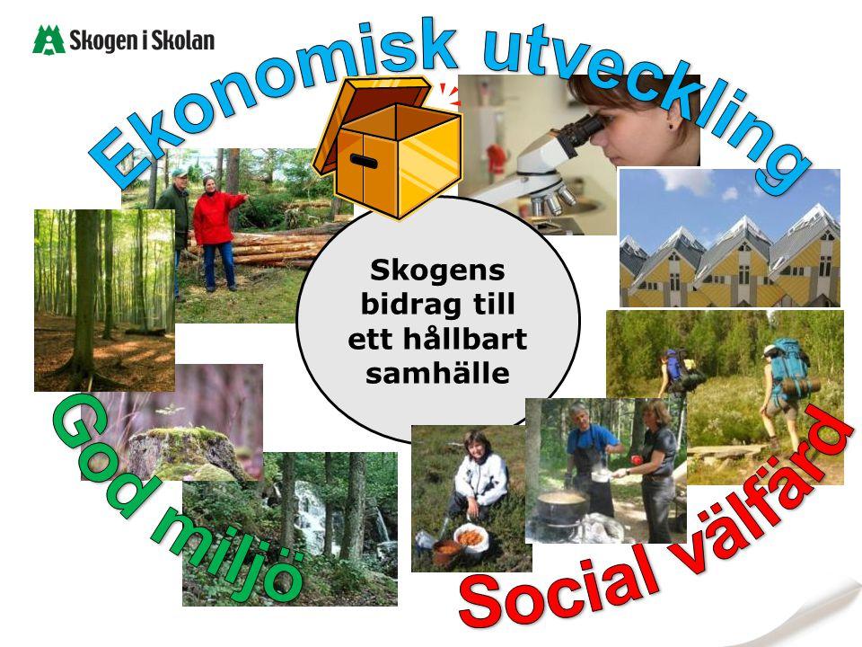 Skogens bidrag till ett hållbart samhälle