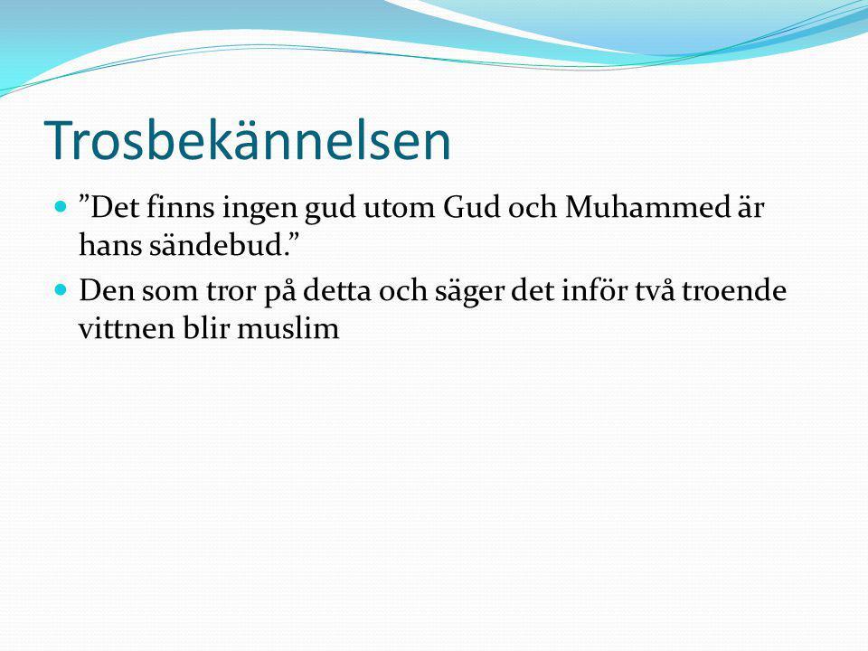 """Trosbekännelsen """"Det finns ingen gud utom Gud och Muhammed är hans sändebud."""" Den som tror på detta och säger det inför två troende vittnen blir musli"""