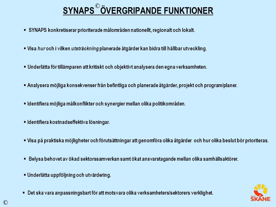 SYNAPS ÖVERGRIPANDE FUNKTIONER  SYNAPS konkretiserar prioriterade målområden nationellt, regionalt och lokalt.