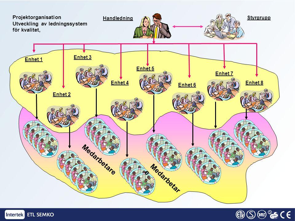 Handledning Enhet 1 Medarbetare Projektorganisation Utveckling av ledningssystem för kvalitet, Styrgrupp Enhet 2 Enhet 3 Enhet 4 Enhet 5 Enhet 6 Enhet