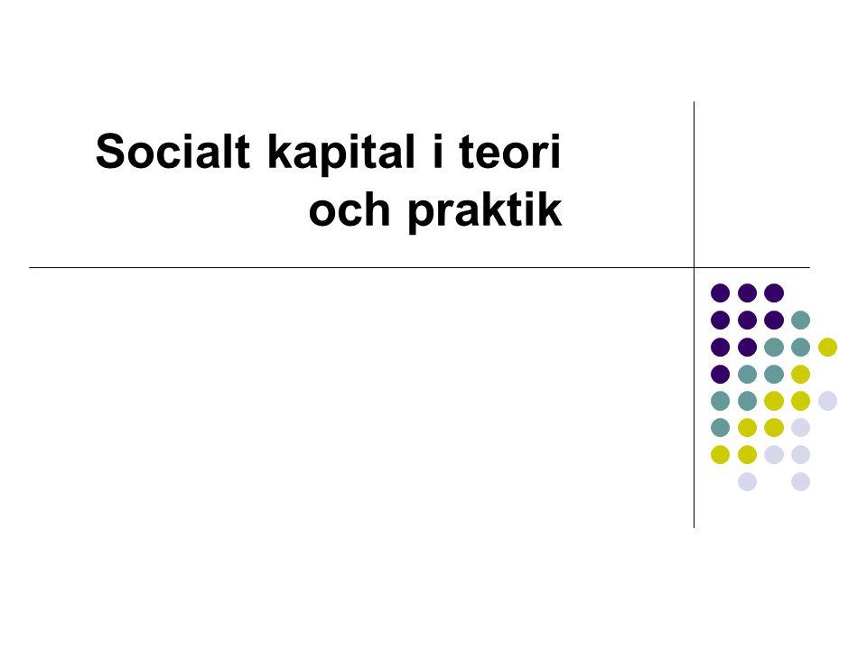 Socialt kapital i teori och praktik