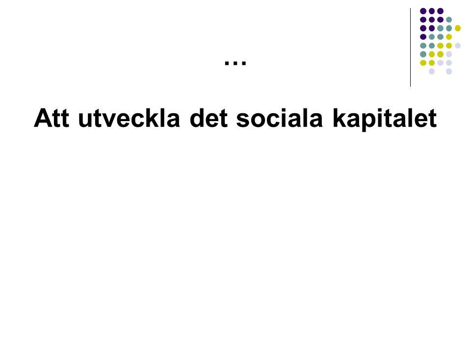 … Att utveckla det sociala kapitalet