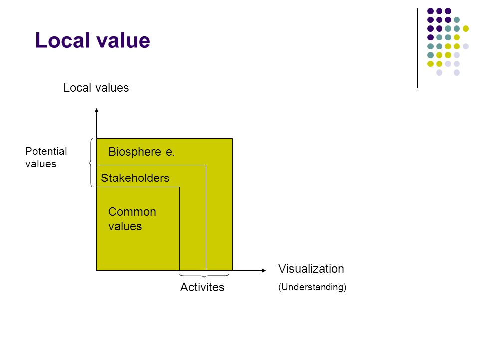 Local value Common values Stakeholders Biosphere e.