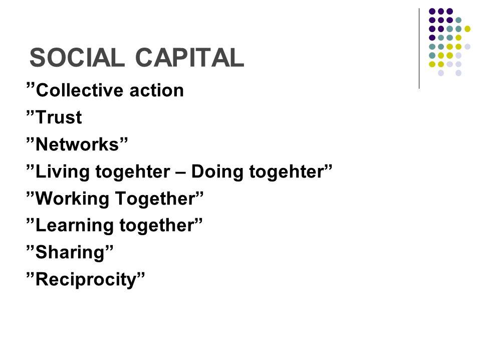 Kunskapsspidning inom sociala nätverk Kontraktslöst – låga kostnader (Agera snabbare och flexiblare, COI) Lägre risker (Online kurser) Intressantare utbud (Inom exempelvis turism, skolan – Kursutbud) Det sociala kapitalets fördelar -Trust-Tillit-Förtroende-