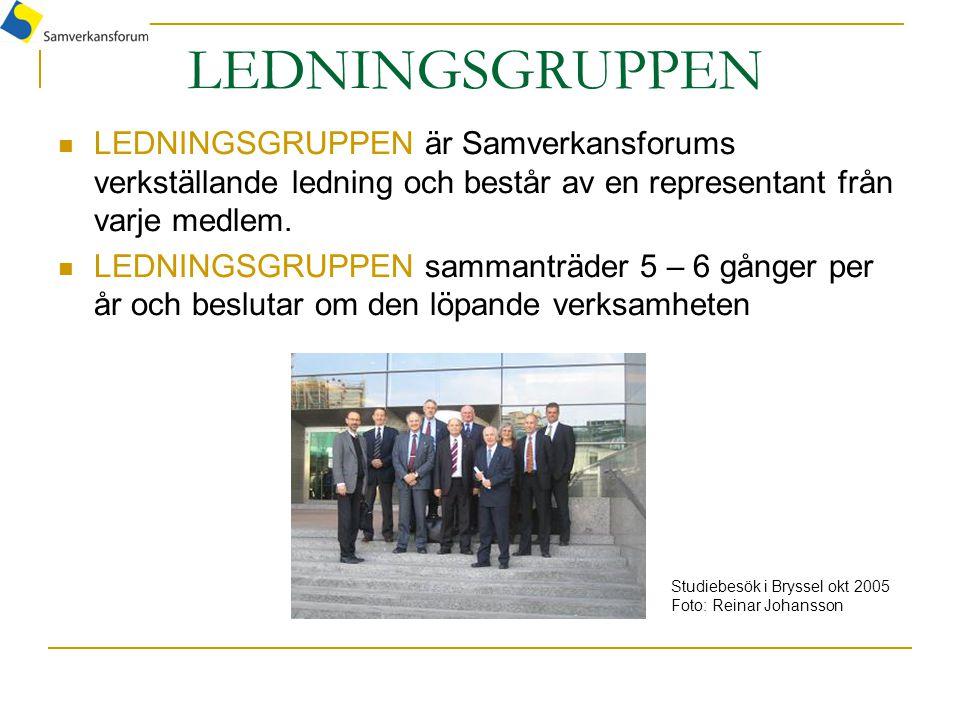 LEDNINGSGRUPPEN LEDNINGSGRUPPEN är Samverkansforums verkställande ledning och består av en representant från varje medlem. LEDNINGSGRUPPEN sammanträde