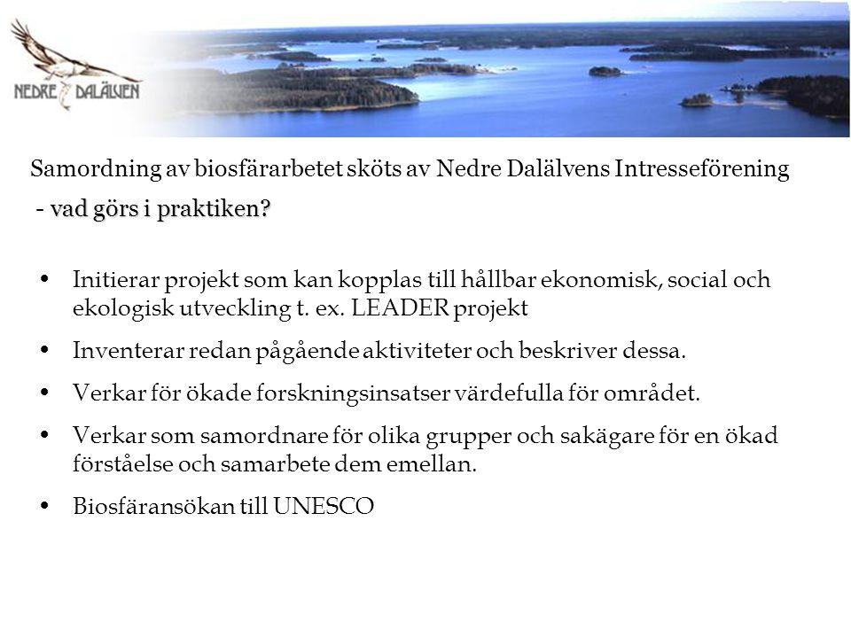 Samordning av biosfärarbetet sköts av Nedre Dalälvens Intresseförening vad görs i praktiken? - vad görs i praktiken? Initierar projekt som kan kopplas