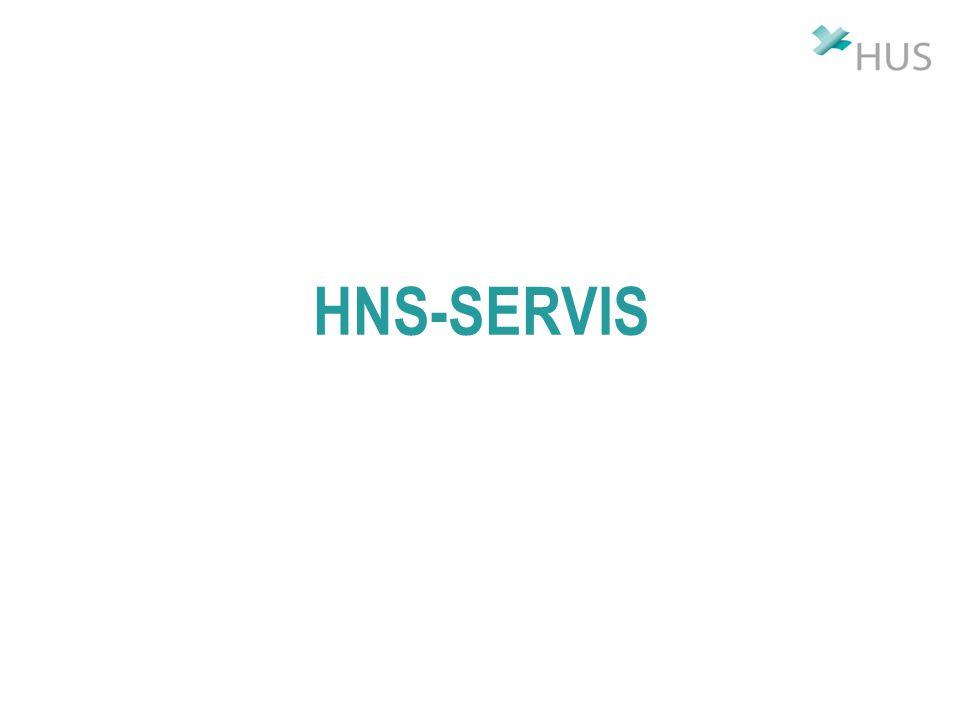 HNS-SERVIS