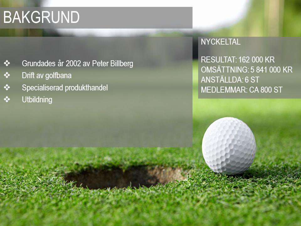  Grundades år 2002 av Peter Billberg  Drift av golfbana  Specialiserad produkthandel  Utbildning NYCKELTAL RESULTAT: 162 000 KR OMSÄTTNING: 5 841