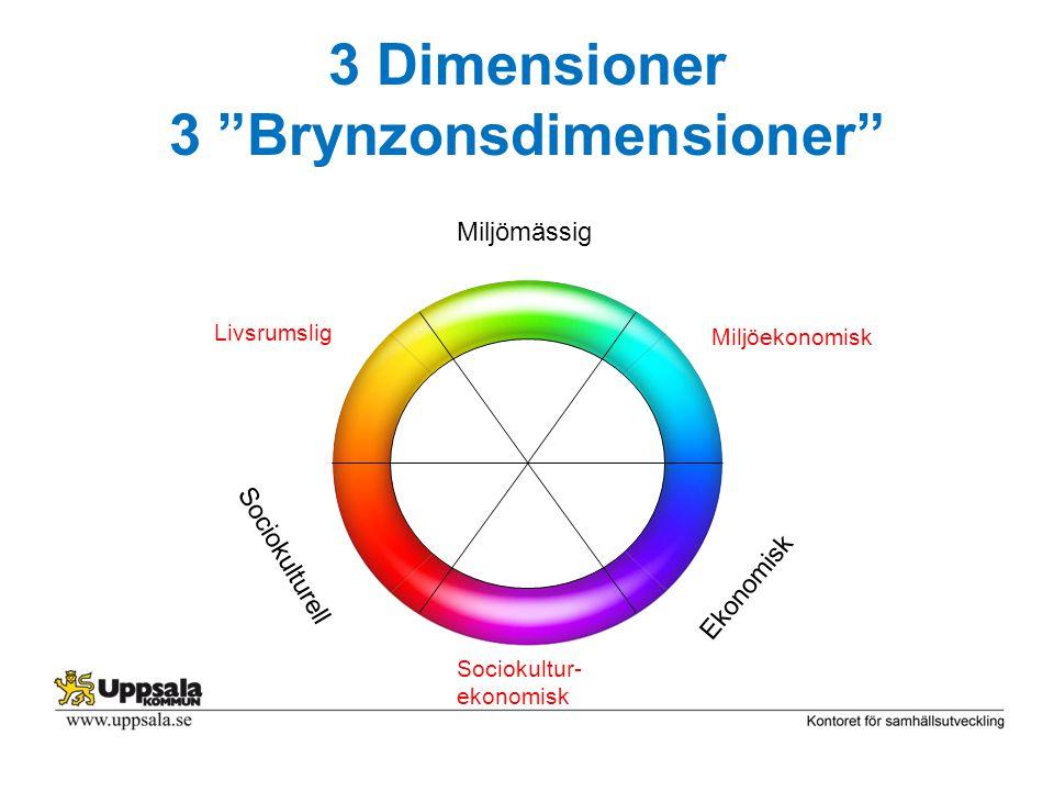 "3 Dimensioner 3 ""Brynzonsdimensioner"" Miljömässig Ekonomisk Sociokulturell Sociokultur- ekonomisk Miljöekonomisk Livsrumslig"