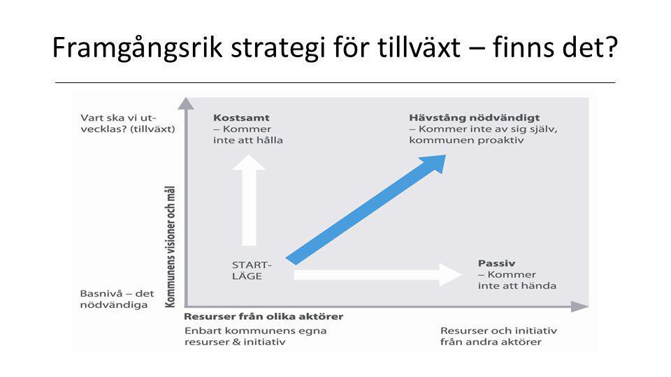 Framgångsrik strategi för tillväxt – finns det?