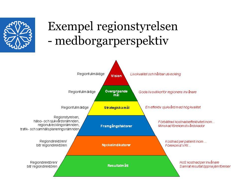 Landstinget i Östergötland Exempel regionstyrelsen - medborgarperspektiv