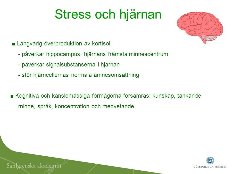 ■ Långvarig överproduktion av kortisol - påverkar hippocampus, hjärnans främsta minnescentrum - påverkar signalsubstanserna i hjärnan - stör hjärncell