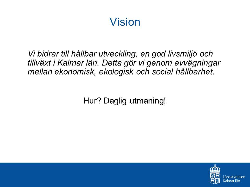 Vision Vi bidrar till hållbar utveckling, en god livsmiljö och tillväxt i Kalmar län.