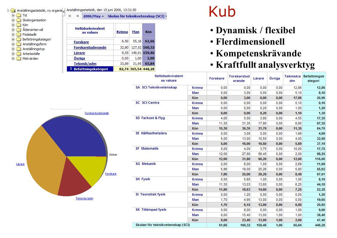 Kub Dynamisk / flexibel Flerdimensionell Kompetenskrävande Kraftfullt analysverktyg