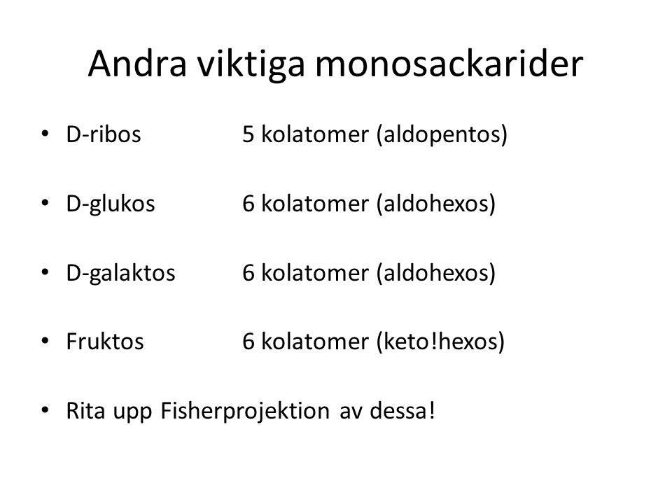 Andra viktiga monosackarider D-ribos5 kolatomer (aldopentos) D-glukos 6 kolatomer (aldohexos) D-galaktos 6 kolatomer (aldohexos) Fruktos 6 kolatomer (keto!hexos) Rita upp Fisherprojektion av dessa!