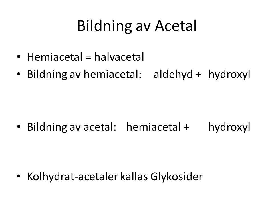 Bildning av Acetal Hemiacetal = halvacetal Bildning av hemiacetal: aldehyd +hydroxyl Bildning av acetal:hemiacetal +hydroxyl Kolhydrat-acetaler kallas
