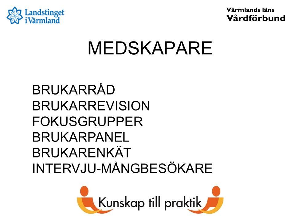 MEDSKAPARE BRUKARRÅD BRUKARREVISION FOKUSGRUPPER BRUKARPANEL BRUKARENKÄT INTERVJU-MÅNGBESÖKARE