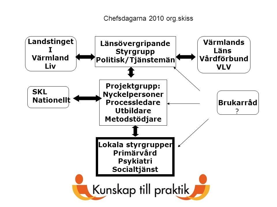 Länsövergripande Styrgrupp Politisk/Tjänstemän Projektgrupp: Nyckelpersoner Processledare Utbildare Metodstödjare Lokala styrgrupper Primärvård Psykia