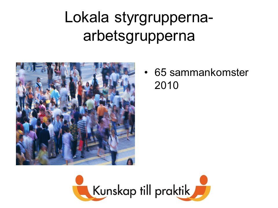 Lokala styrgrupperna- arbetsgrupperna 65 sammankomster 2010