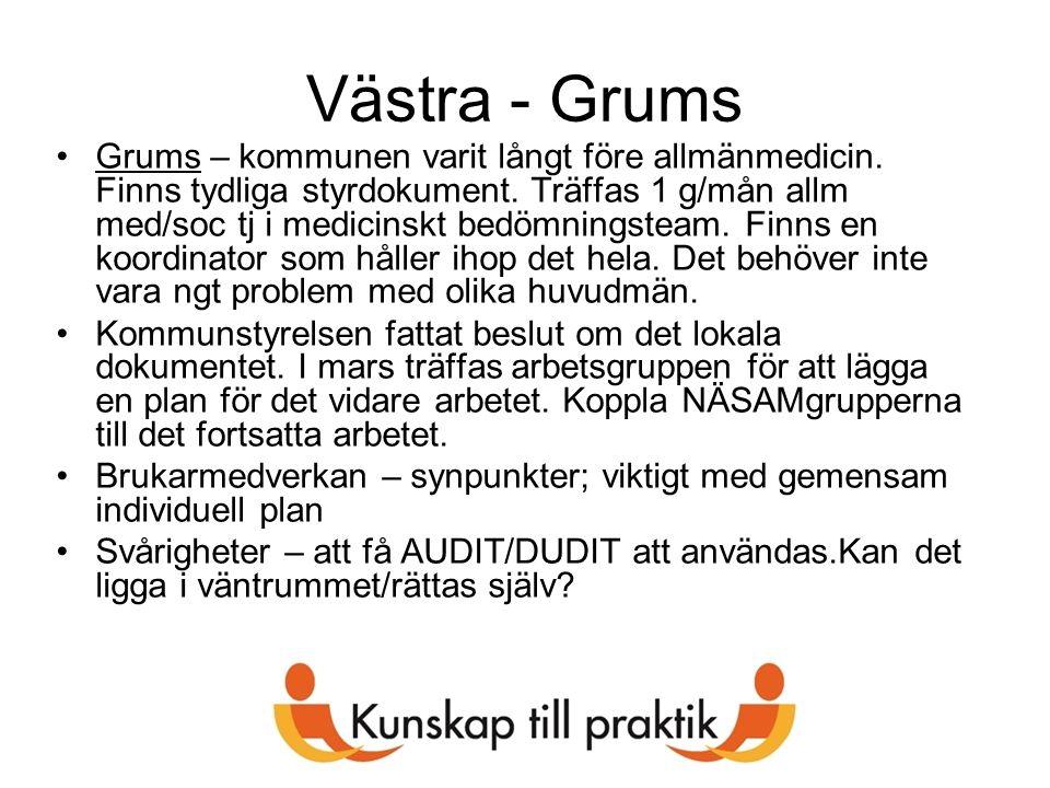 Västra - Grums Grums – kommunen varit långt före allmänmedicin. Finns tydliga styrdokument. Träffas 1 g/mån allm med/soc tj i medicinskt bedömningstea